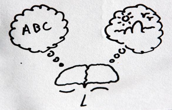 Найцікавіше за лаштунками дизайну: теорія подвійного кодування