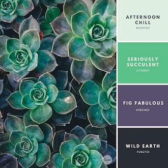 Instagram для натхнення, кольори: за ким стежити?