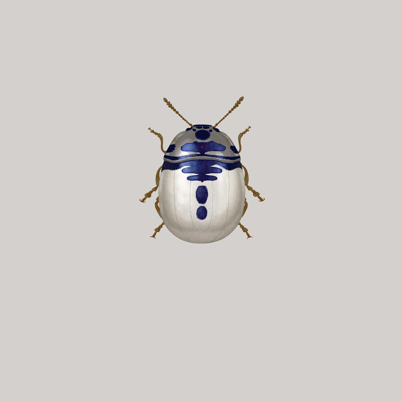 Ілюстратор перетворив відомих героїв кіно на неймовірних жуків (фото)