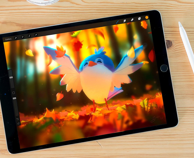 Procreate 4 для iPad (Огляд)
