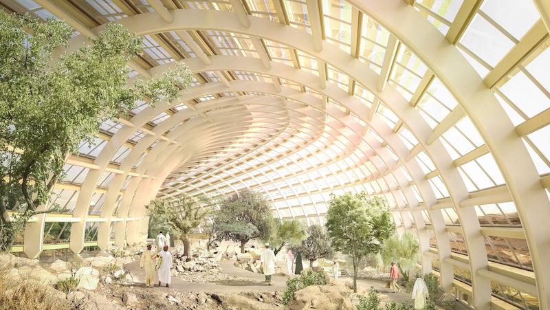В Омані з'явиться найбільший бот-сад у світі – перші зображення