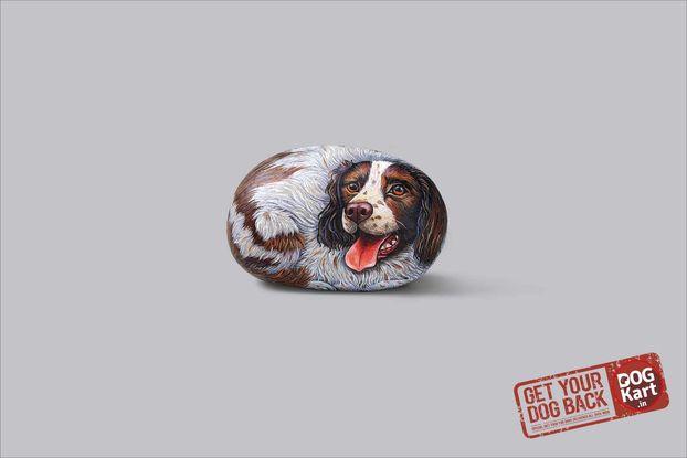 Як боротися із ожирінням собак: ДУЖЕ оригінальні принти від дизайнерів із Індії