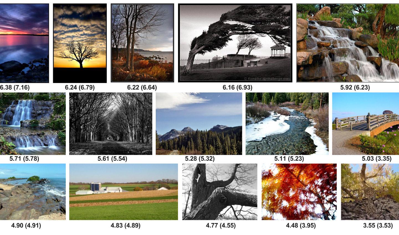 """Google навчив AI розпізнавати якість фото та їхню """"естетичну привабливість"""""""