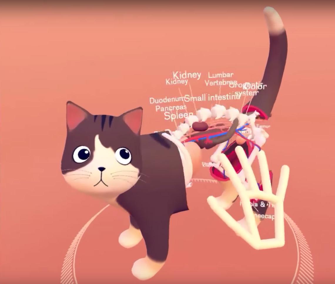 Нові можливості VR: Leap Motion показала дослідження анатомії руками (ВІДЕО)