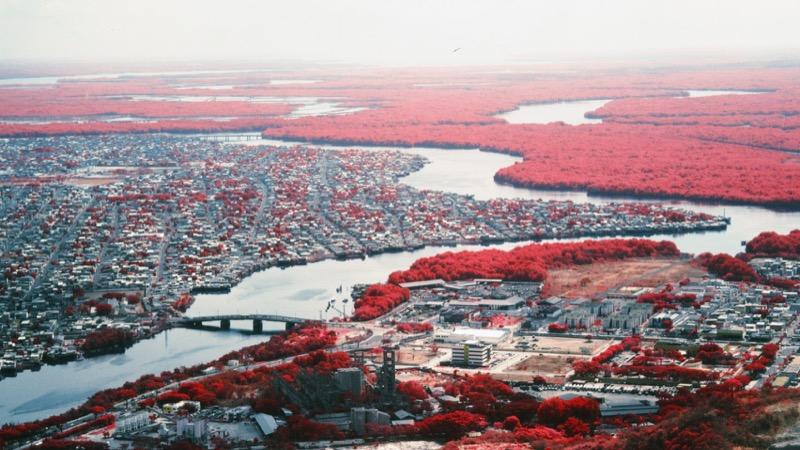 Надзвичайно промовиста серія фотографій про боротьбу міста з природою