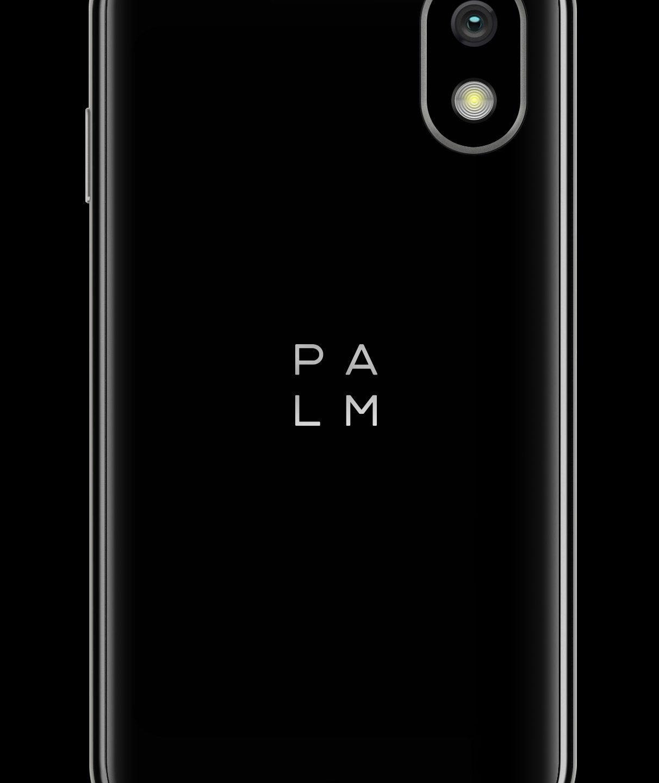 Новий ринок – нова айдентика: Palm оновив логотип
