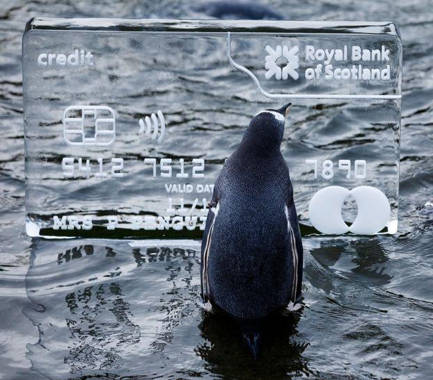 Геніальний креатив від Банку Шотландії (ФОТО)
