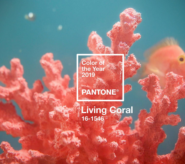 Pantone назвав колір 2019 – це Living Coral