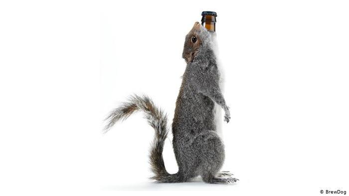 Як виглядає дизайн пляшок у найміцнішого у світі пива: + 5 нових сортів/пляшок (ФОТО)