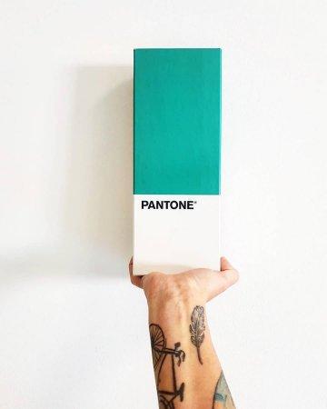 Інститут кольору Pantone назвав колір 2020 року!