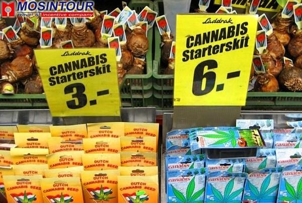 Голландія наркотики